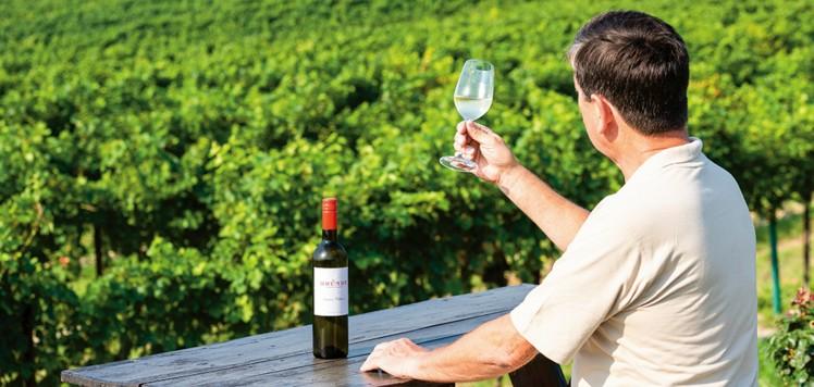 Rudolf Bründlmayer bei seinem Weingut.